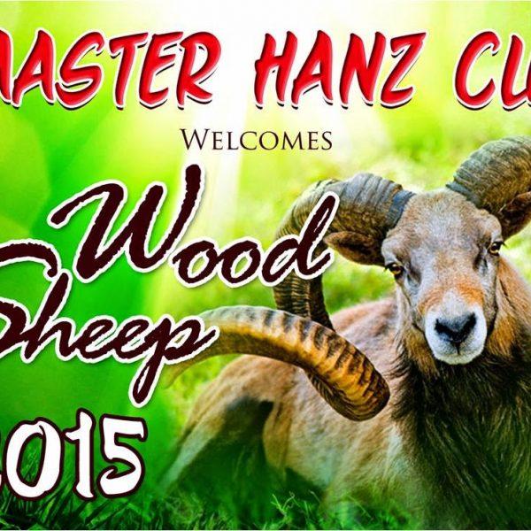 Wood Sheep 2015